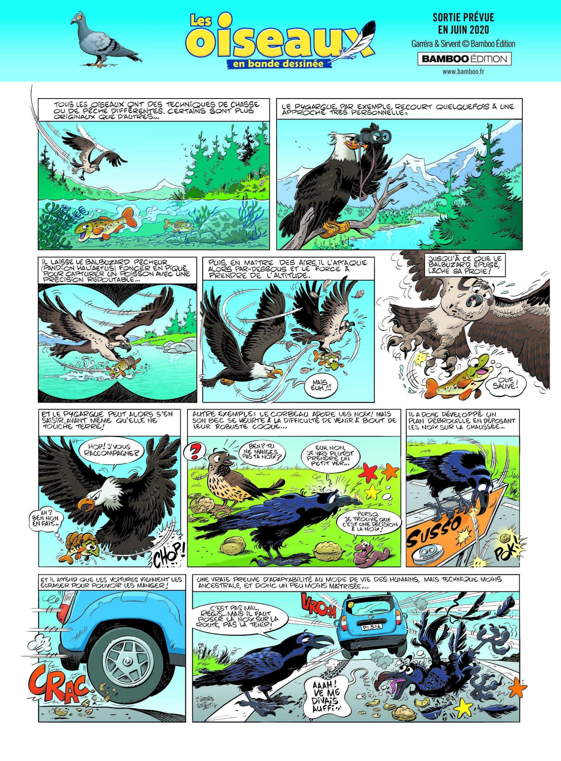 Avant-première : Les Oiseaux avec Bamboo (2)